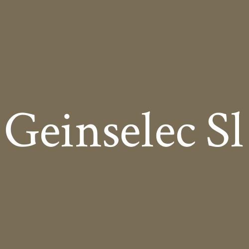 Geinselec SL