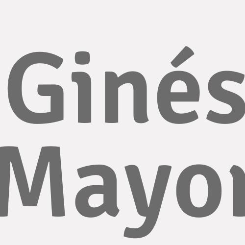 Ginés Mayor
