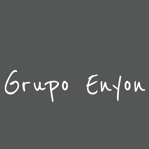 Grupo Enyon