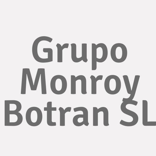 Grupo Monroy Botran SL