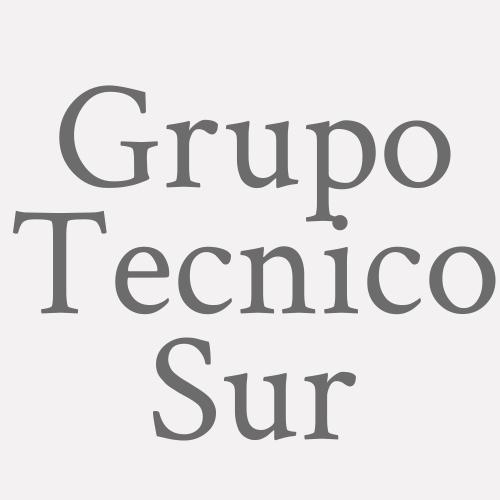 Grupo Técnico Sur