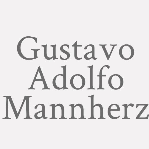 Gustavo Adolfo Mannherz