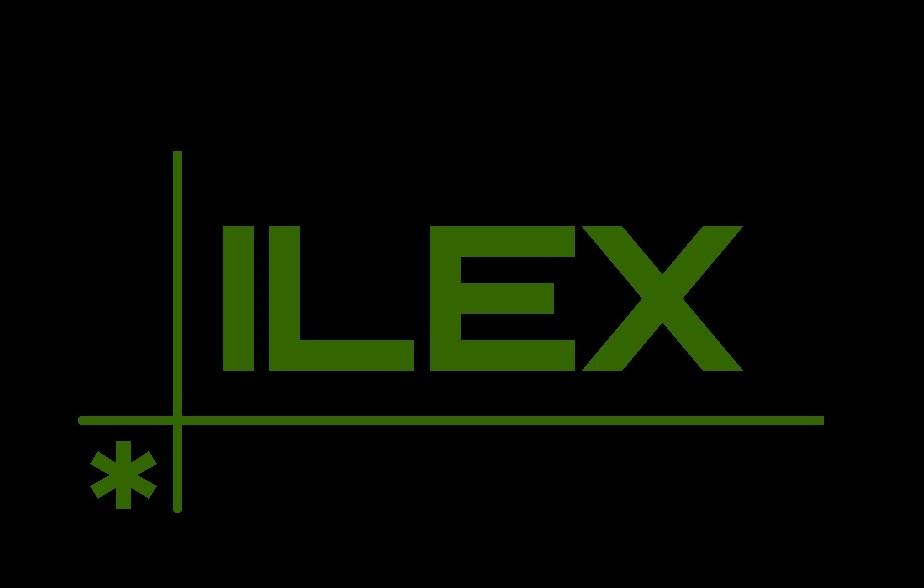 ILEX OBRAS Y REFORMAS S.L