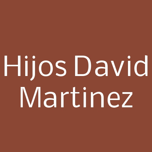 Hijos David Martinez