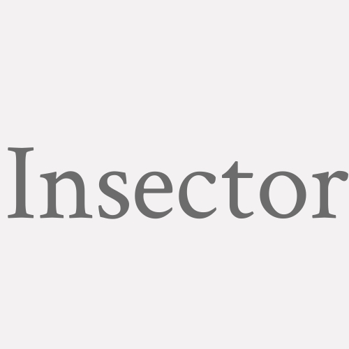 Insector