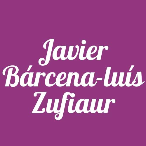 Javier Bárcena-Luís Zufiaur