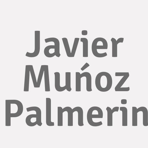 Javier Muńoz Palmerin