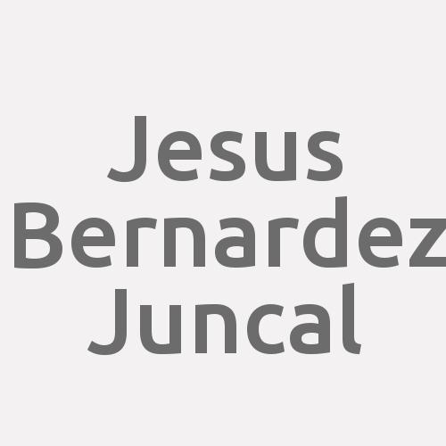 Jesus Bernardez Juncal