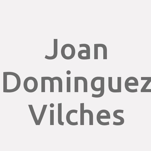 Joan Dominguez Vilches