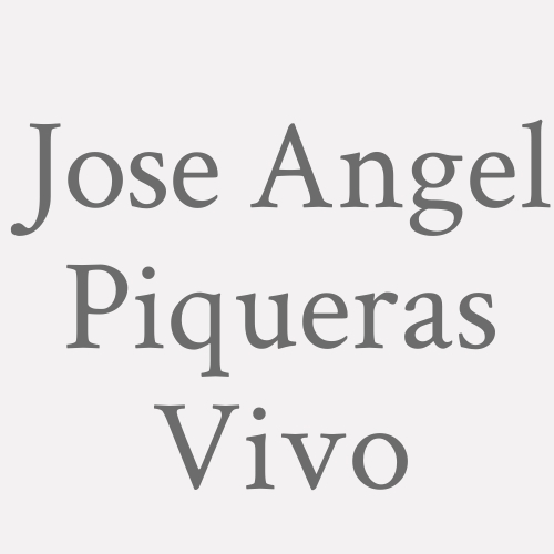 Jose Angel Piqueras Vivo