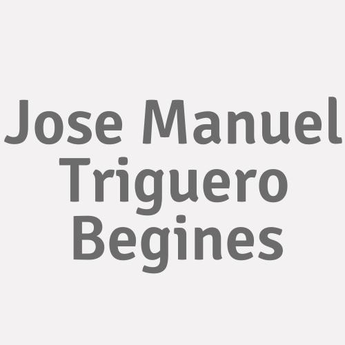 Jose Manuel Triguero Begines