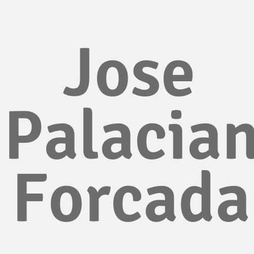 Jose Palacian Forcada