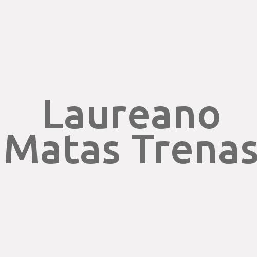 Laureano Matas Trenas