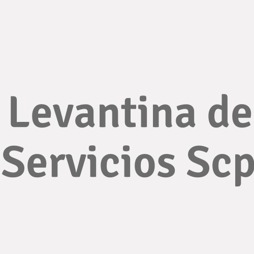 Levantina  De Servicios Scp
