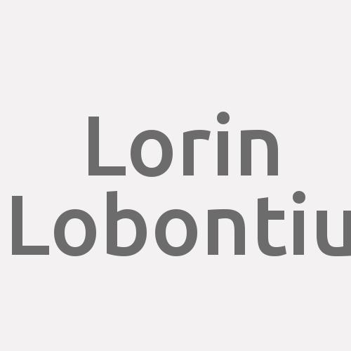 Lorin Lobontiu