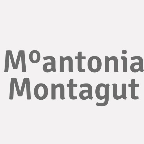 Mºantonia Montagut