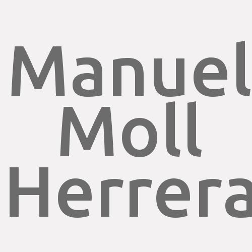 Manuel Moll Herrera