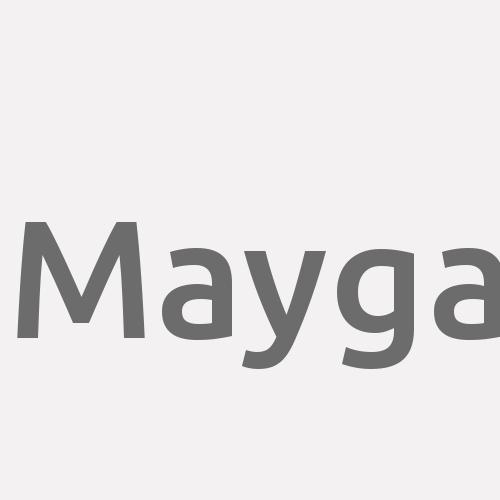 Mayga
