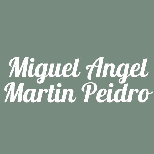 Miguel Angel Martín Peidro - Pintores