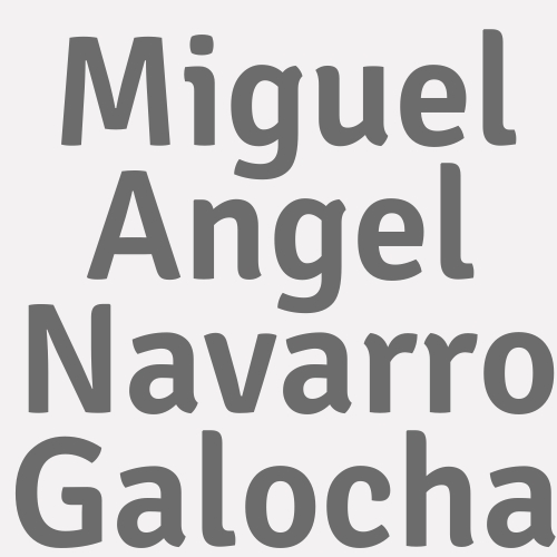 Miguel Angel Navarro Galocha