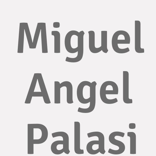 Miguel Angel Palasi