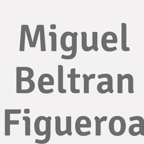 Miguel Beltran Figueroa