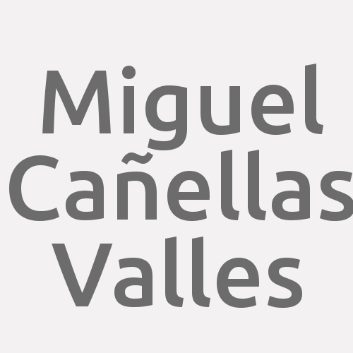 Miguel Cañellas Valles