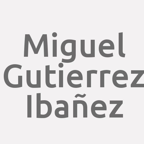 Miguel Gutierrez Ibañez