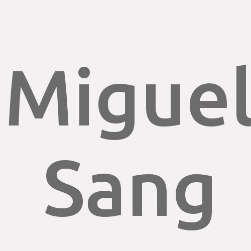 Miguel Sang