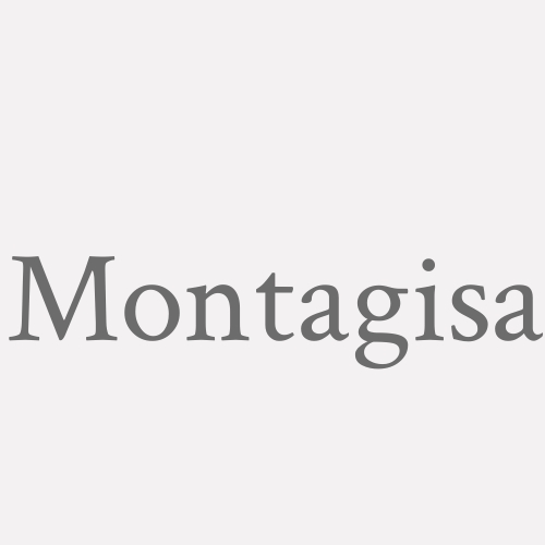 Montagisa