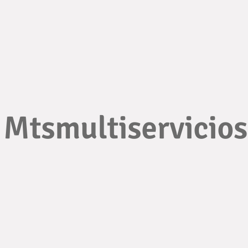 Mts.multiservicios