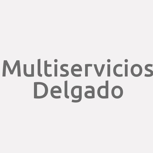 Multiservicios Delgado