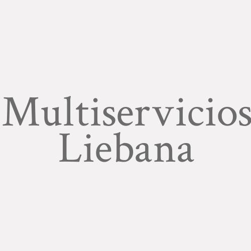 Multiservicios Liebana