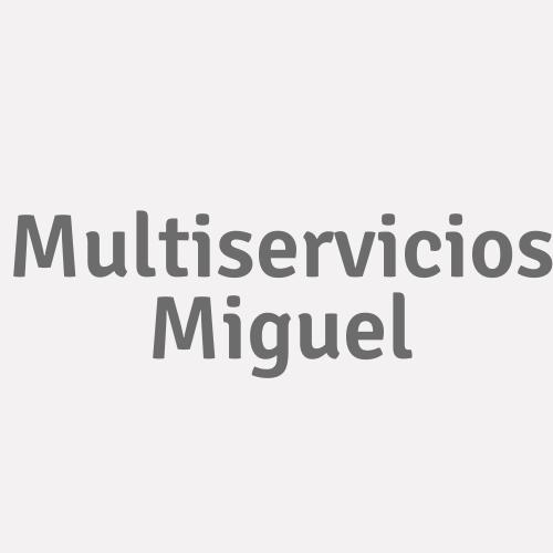 Multiservicios Miguel