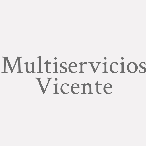 Multiservicios Vicente