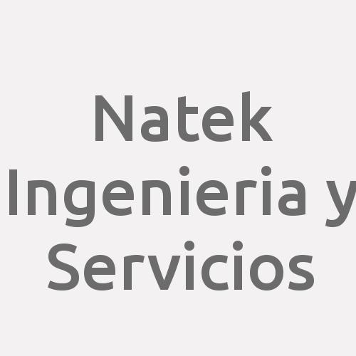 Natek Ingenieria y Servicios