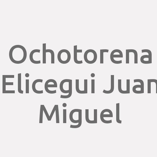 Ochotorena Elicegui Juan Miguel