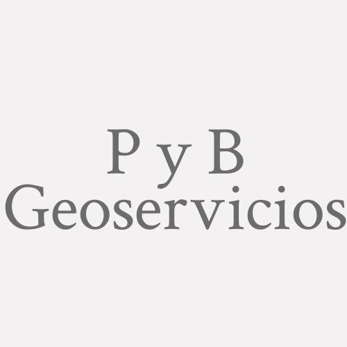 P Y B Geoservicios