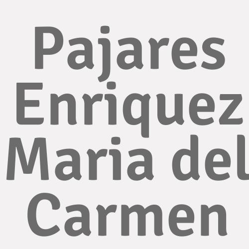 Pajares Enriquez Maria del Carmen