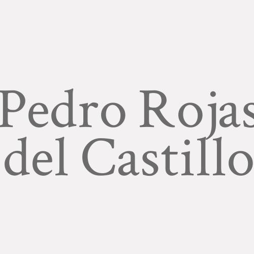Pedro Rojas Del Castillo