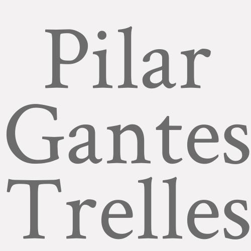Pilar Gantes Trelles