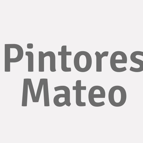 Reformas y Pinturas Mateo