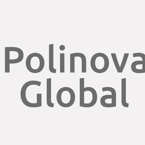 Polinova Global