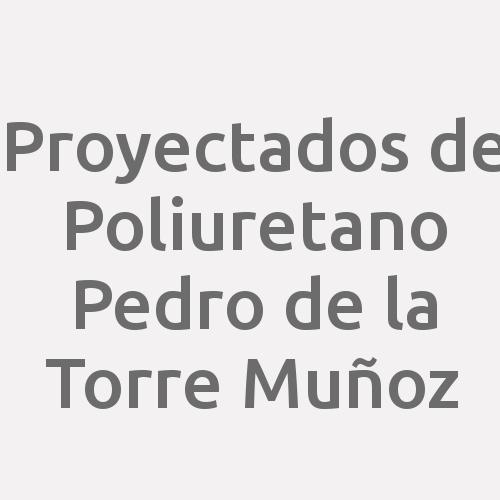 Proyectados de Poliuretano Pedro de la Torre Muñoz