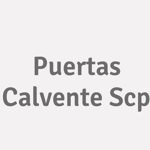 Puertas Calvente Scp