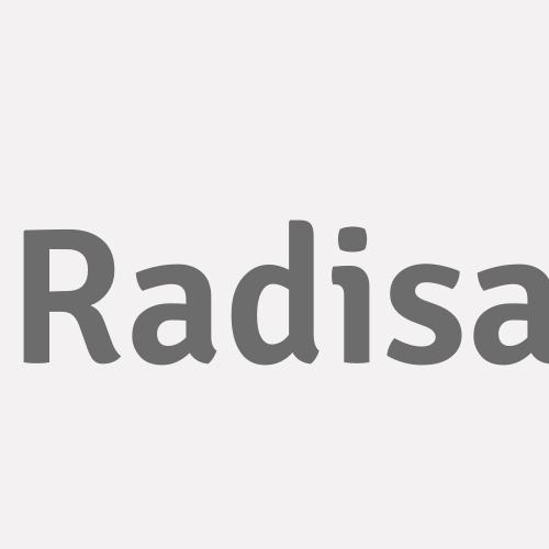 Radisa