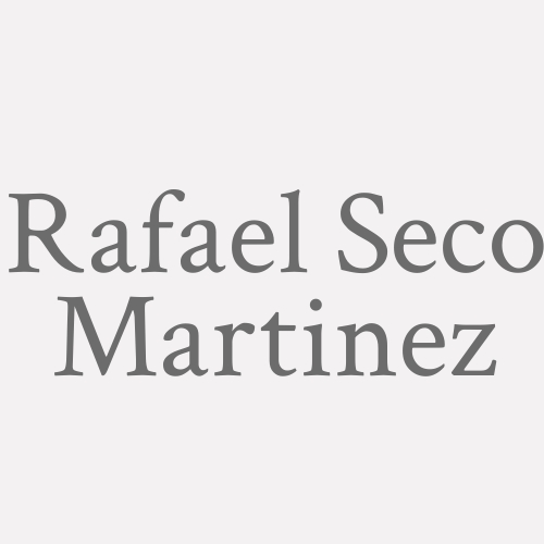 Rafael Seco Martinez