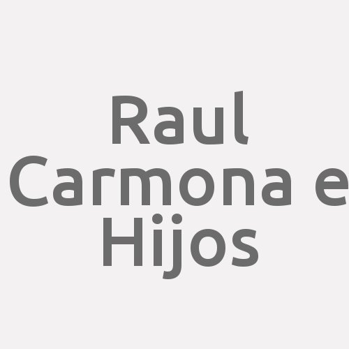Raul Carmona E Hijos