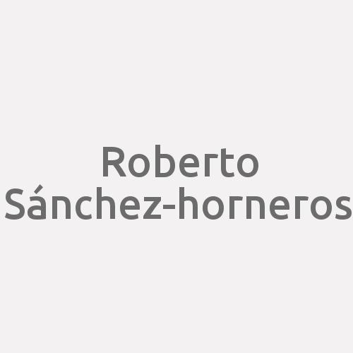 Roberto Sánchez-horneros