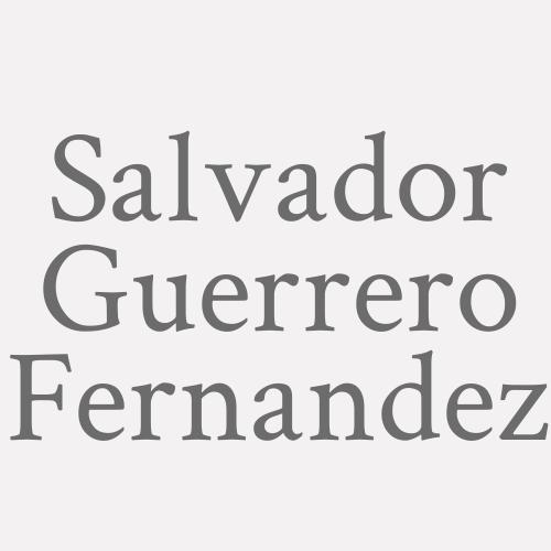 Salvador Guerrero Fernandez